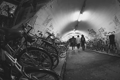 TUNNEL (ajpscs) Tags: ajpscs japan nippon 日本 japanese 東京 tokyo city people ニコン nikon d750 tokyostreetphotography streetphotography street seasonchange spring haru はる 春 2017 shitamachi monochromatic grayscale monokuro blackwhite blkwht bw blancoynegro nightshot tokyonight nightphotography citylights tokyoinsomnia nightview blackandwhite monochrome urbannight alley othersideoftokyo strangers walksoflife 白&黒 tunnel