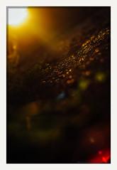 lenscape (chickentender™ (Eyewanders Foto)) Tags: eyewandersfoto flare ground k7 lenscape pentax sun wander