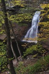 Sullivan Falls, Sullivan County PA (jkrieger84) Tags: nikon d500 landscape nature sullivanfalls pa sullivan run waterfall fall leaves