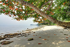 Pantai Kelagian | Lampung
