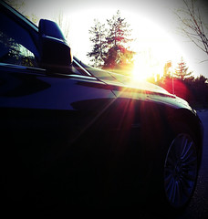 BMW Serie 3 (detalle)