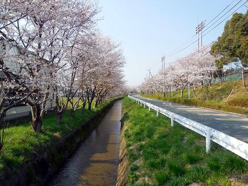 Takashima-Shi