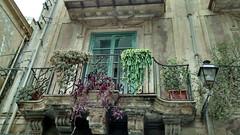 PALERMO-Via Alloro (gabrilu) Tags: balcony sicily palermo sicilia balconifioriti