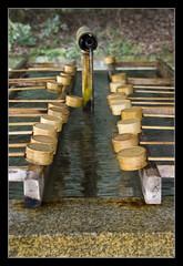 Meiji Shrine @Tokyo, Japan (brunombo) Tags: travel water japan reflections tokyo shrine pentax cups tamron acqua riflessi viaggio giappone meiji meijishrine coppe tamronaf18250mmf3563diiildasphericalifmacro justpentax