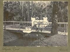 Meisjes op brug in Palmentuin