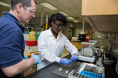 _FAMU_College_of_Engineering0007_2014-04-24 (famu.univadv) Tags: female landscape lab faculty collegeofengineering famu