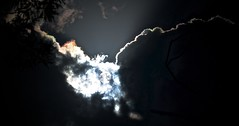 I've seen the light (Andy Burton Oz) Tags: light shadow sky cloud sun sunlight solar sydney australia shade nsw newsouthwales naremburn 2014 flatrockgully afsvrzoomnikkor70300mmf4556gifed andyburton nikond7100 andyburtonoz