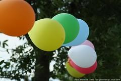 Ballonnen bij een buitenfeestje (Hans Westerink) Tags: party feest color colour 1969 colors canon eos postcard ballon balloon hans noordbrabant nicepictures briefkaart 450d westerbeek nederlandbelicht westerink worldincolors hanswesterink hanswesterink1969