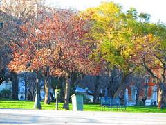 Spianada Square (maria vlachou junior) Tags: park island greece corfu spianada