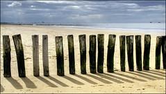 CADZAND 1F (BAUWENS RENE) Tags: strand nikon nederland noordzee hdr cadzand zeeuwsvlaanderen d7000