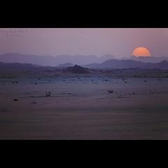 Sunset (TARIQ-M) Tags: texture sahara landscape sand waves pattern desert ripple patterns dunes wave ripples riyadh saudiarabia canoneos5d canonef100400mmf4556lisusm canonef1635mmf28liiusm dahna iphoneography tariqm instagramapp uploaded:by=instagram aldahna tariqalmutlaq kingofdesert canoneos5dmarkiifullframe canoneos5dmarkiifulilframe