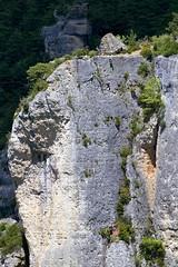 Rando ermitage Saint-Michel (ijmd) Tags: france landscape paysage gorgesdelajonte peyreleau lerozier caussenoir