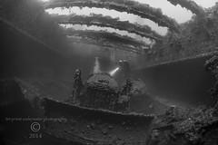 Truk Lagoon 2014 071 0643b Hoki Maru bulldozer (tdpriest) Tags: world two japanese war underwater pacific truk shipwrecks select wrecks underwaterphotography chuuk