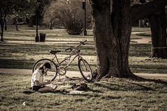 Evening study (redux) (.Chris Lee) Tags: trees shadow woman sun tree college girl grass bike bicycle outside outdoors reading evening spring student nikon midwest alone sitting afternoon shadows peaceful sunny ground books iowa read study telephoto faded bark backpack late grasses desaturated tamron 90mm studying later dx tamron90mm warmed nikondx portraitmacro d3100 nikond3100
