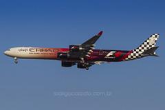 A6-EHJ (rcspotting) Tags: abudhabi airbus formula1 gru a340600 etihad avgeek sbgr a6ehj rcspotting