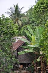Kampung (teohwp85) Tags: malaysia kampung kelantan bharu wakaf