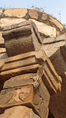 Squirrel climbing down ancient ruins -Qutb Minar Complex (Rckr88) Tags: india asia minaret delhi minar minarets newdelhi qutb qutbminar mughal mughals