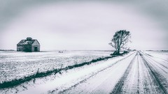 Simple Life (Justin Loyd Photography) Tags: rural country beautiful ngc snow gray day winter march iowa photography flickr tree barn farm canon6d road dustyroad gravel landscape 24105l