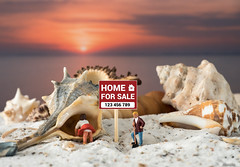 For sale. (moniquevantorenburg) Tags: tabletop tinypeople littlepeople shells schelpen miniature minatuur sunset zonsondergang m43 mft microfourthirds olympus124028 olympusomdem5markii moniquevantorenburg