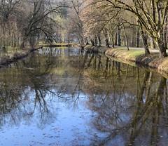Park in Hildburghausen (:Linda:) Tags: germany thuringia town hldburghausen park canal tree reflection bluesky