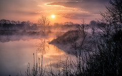 misty morning (Florian Grundstein) Tags: sunrise misty morning reflection spiegelung water lake riverside picoftheday beautifulcolours beautifullight sonnenaufgang river mirror clouds skyscape cloudscape landscape bavaria upperpalatinate tree silhouette