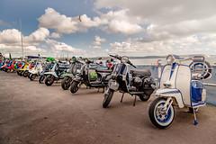 Quadrophenia (darren.cowley) Tags: moped scooter weymouth beach seaside iconic quadrophenia twowheels british vintage mods rockers clouds bluesky darrencowley gull flight