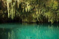 Tulum Pet Cemetary Cenote cave-6