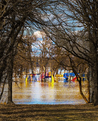 Watery Oasis (Ruth Voorhis) Tags: trees branches twigs grass river water playground slide reflections sky outdoors