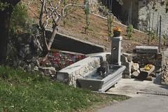 Mastik (bulbocode909) Tags: chiens fontaines printemps arbres vignes nature vert rouge