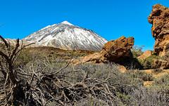 powdered peak (werner boehm *) Tags: wernerboehm elteide tenerife teneriffa mountain kanarischeinseln islascanarias