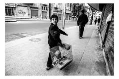 A boy follows his father, carrying a birdcage. Amman, Jordan. (Roman Lunin) Tags: jordan amman blackwhite blackwhitephoto blackwhitephotography monochrome street streetphotography streetbw streetblackwhite strangers children kids kid arab birdcage candid