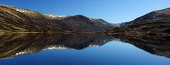 Loch Callater Panorama (steve_whitmarsh) Tags: scotland highlands moor heather mountain aberdeenshire scottishhighlands water loch lake callater hills reflection panorama