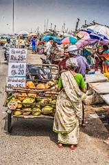Chennai Coconut Vendor (gecko47) Tags: india tamilnadu chennai madras marinabeach market fishermansmarket seafood coconuts vendor food urban seaside beach people vibrantfabrics