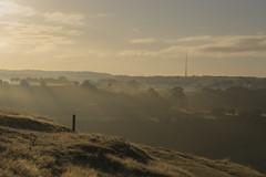 Emley Moor Mast (StephenLS2011) Tags: dawn sunrise fog sunshine summer landscape emley moor mast dalton bank nature reserve mist huddersfield westyorkshire kirklees british