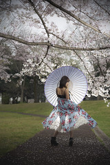 Under the cherry blossom (ai3310X) Tags: none carlzeiss ycontax sonnar t2885 桜 portraits ポートレート