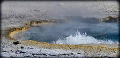 _DSC8248 (DianeBerky19) Tags: 2016 jacksonholewyoming summitnatureworkshop wy nikon yellowstonenationalpark geyser