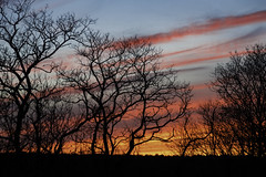 Apr17 Kitchen Window Sunset (joegeraci364) Tags: borough connecticut stonington art beginning calm cloud color day daybreak early fine forest horizon image landscape morning nature outdoors peace photo photography print ray reflection renew renewal scenic serene shore silhouette sky spiritual sun sunrise tree weather zen
