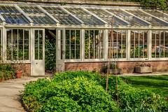 An English country garden. (Ian Emerson) Tags: garden greenhouse potting english england shrubs vegetation vegetables greenery glass canon 50mm