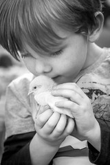 Happy Easter (Sandy Sharples) Tags: easter spring chick portrait boy monochrome blackandwhite love life tenderness nature