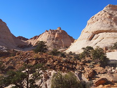 PB130354 (coolislandsong24) Tags: capitolreef nationalpark utah scenicdrive geology history nature camping hiking