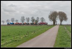 CT 1618 + DBC 6493 + 6402 + 6404 + RTS 1374 - 91210 (Spoorpunt.nl) Tags: 8 april 2017 captrain 1618 db cargo rail polska polen 6493 6402 6404 rts 1374 transport locomotief overbrenging loctrein eempolder amersfoort 91210