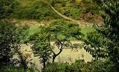 NEPAL, Auf dem Weg nach Pokhara, 16010/8271 (roba66) Tags: textur texture effecte brücke bridge hängebrücke reisen travel explore voyages roba66 visit urlaub nepal asien asia südasien pokhara landschaft landscape paisaje nature natur naturalezza rio river fluss