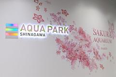 IMG_1371 (Jun.Ohashi) Tags: aquaparkshinagawa aquarium shinagawa アクアパーク品川 品川 水族館 港区 東京都 日本 jp canon キャノン eos eos5dmarkiv eos5dmark4 5dmarkiv 5dmark4 5d4 tamronspaf2875mmf28xrdildasphericalifmacroa09 tamron タムロン sp 2875mm f28 di ld aspherical if macro a09