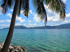 Nice Shade, Nice View (Ken Cruz --- Fernweh) Tags: beach thailand phuket secluded shade palmtrees water ocean paradise nature landscape seascape outdoors asia southeastasia blue patong patongbeach