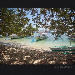 Luli Island (Eiji Murakami) Tags: philippines palawan hondabay olympus tg4 luliisland フィリピン パラワン ホンダベイ