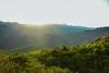Nagaparan Highlands (Leitratista) Tags: nagaparan highlands mountain peak top above nature explore moment love lovephotography photography makephoto learnphotography nikonshots nikond3400 nikoncapture 1855mmafpvrkit kitlens throughherlens earthday landscape light sunset sunsetdrama composition