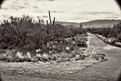 Tucson Day 1- Up The Mountian_028 (Mark Stumme) Tags: darktable luminancehdr nikond600 landscape tucson desert bw mtlemmon