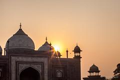 Taj Sunrise 2215 (Ursula in Aus) Tags: india architecture taj tajmahal mosque unesco masjid uttarpradesh earthasia