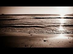 longing... (p.m. m.) Tags: sea summer blackandwhite sun sunlight beach nature sand longing