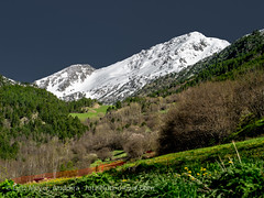 Andorra nature: Vall nord (lutzmeyer) Tags: pictures mountains primavera nature landscape photography spring montana europe photos pics natur may natura paisaje images berge mai fotos valley mayo region landschaft andorra bilder imagen pyrenees tal iberia frühling montanas pirineos pirineus iberianpeninsula gebirge paisatge pyrenäen maig imatges muntanyes frühjahr landkreis vallnord arcalis gebirgszug iberischehalbinsel mfmediumformat ordinoparroquia lutzmeyer lutzlutzmeyercom